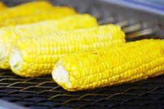 kukurudza piec na grillu Fotografia Royalty Free