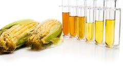 Kukurudza wytwarzał etanolu biopaliwo z próbnymi tubkami na białym backgrou Obrazy Royalty Free