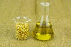 Kukurudza wytwarzający etanolu paliwo z próbną tubką Fotografia Stock