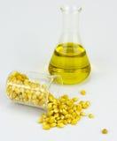 Kukurudza wytwarzający etanolu paliwo z próbną tubką Zdjęcia Stock