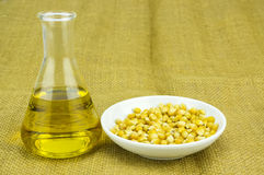 Kukurudza wytwarzający etanolu paliwo z próbną tubką Obrazy Stock