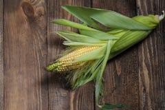 kukurudze obrazy royalty free