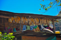 Kukurudze wieszają na zewnątrz balkonu Zdjęcia Stock