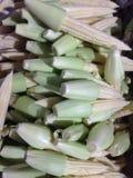 kukurydza kulinarna odciął dziecko świeżo przygotowanego części warzywa wok Zdjęcie Royalty Free