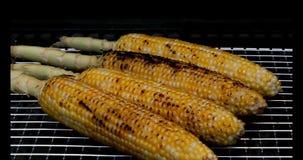 kukurydza z grilla zbiory wideo