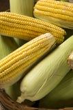 Kukurydzana kukurydza i popkorny łączyliśmy na stole Fotografia Royalty Free