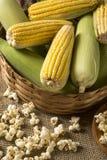 Kukurydzana kukurydza i popkorny łączyliśmy na stole Zdjęcie Royalty Free