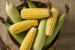 Kukurydzana kukurydza i popkorny łączyliśmy na stole Fotografia Stock