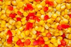kukurydzane tło fasole Zdjęcie Royalty Free