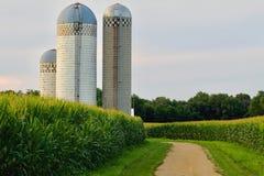 Kukurydzanego pola gospodarstwa rolnego silos zdjęcia stock