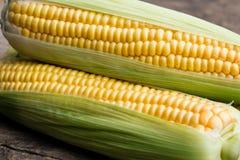 Kukurydzani cobs zdjęcie stock