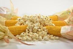 Kukurydzani cobs nad z stosem popkorn Zdjęcia Royalty Free