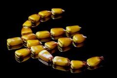 Kukurydzani nasiona tworzy Euro symbol Kukurudza rynek Kukurydzani nasiona Obrazy Stock