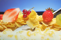 Kukurydzani płatki i owoc Zdjęcia Stock