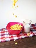Kukurydzani płatki i mleko Zdjęcia Royalty Free
