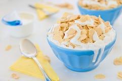 Kukurydzani zboża z greckim jogurtem w błękitnym ceramicznym garnku Fotografia Stock