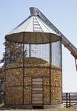 Kukurydzany ściąga zdjęcie stock