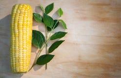 Kukurydzany cob Obrazy Royalty Free