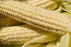 kukurydzany cukierki obrazy stock