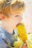 kukurydzany festiwal Zdjęcie Royalty Free