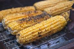 Kukurydzany grill Zdjęcie Royalty Free