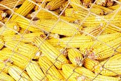 Kukurydzany Grupowanie Fotografia Royalty Free