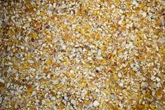 Kukurydzany otręby Fotografia Stock