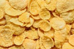 kukurydzany zamknięci kukurydzani płatki Obraz Royalty Free