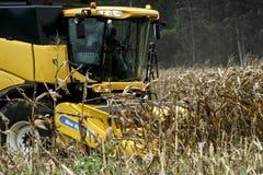 Kukurydzany zbierać Fotografia Royalty Free