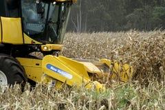 Kukurydzany zbierać Obraz Royalty Free