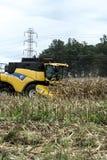 Kukurydzany zbierać Obraz Stock