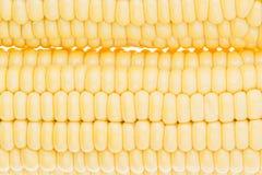 Kukurydzanych cobs clouseup Świeży kukurydzany zbliżenie struktura Obrazy Stock