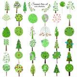 Kulör blom- botanisk grön trädsamling royaltyfri illustrationer