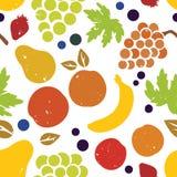 kulör frukt Royaltyfri Fotografi