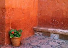 Kulör grov stenvägg för djup apelsin med stenbänken och en blommaPlanter Santa Catalina Monastery, Arequipa, Peru arkivfoto