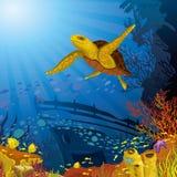 Kulör korallrev med den gula sköldpaddan Arkivfoton