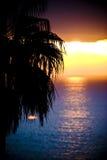 kulör solnedgång royaltyfri bild