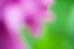 Kulör suddig bakgrund Royaltyfria Foton