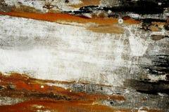 Kulör svamp Arkivfoto
