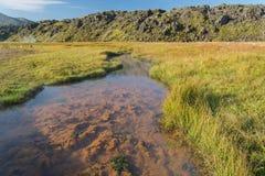 Kulör varm flod i Landmannalaugar NP, Island Arkivbild