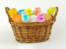 kulöra ägg för korg Arkivfoto