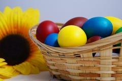 kulöra ägg för korg Fotografering för Bildbyråer