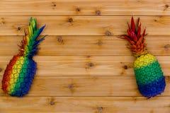 Kulöra ananors för rolig ljus regnbåge Arkivbilder