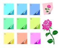 Kulöra ark av papper och en isolerad ros Royaltyfria Bilder