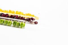 Kulöra bönor i ett exponeringsglas Arkivfoton