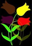 kulöra blommor Arkivbild