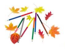 Kulöra blyertspennor och några höstsidor Royaltyfri Foto