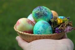 Kulöra easter ägg i korg- och vårblommor Arkivfoto