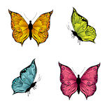 Kulöra fjärilar Arkivbilder