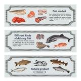 Kulöra Marine Food Horizontal Banners Royaltyfria Bilder